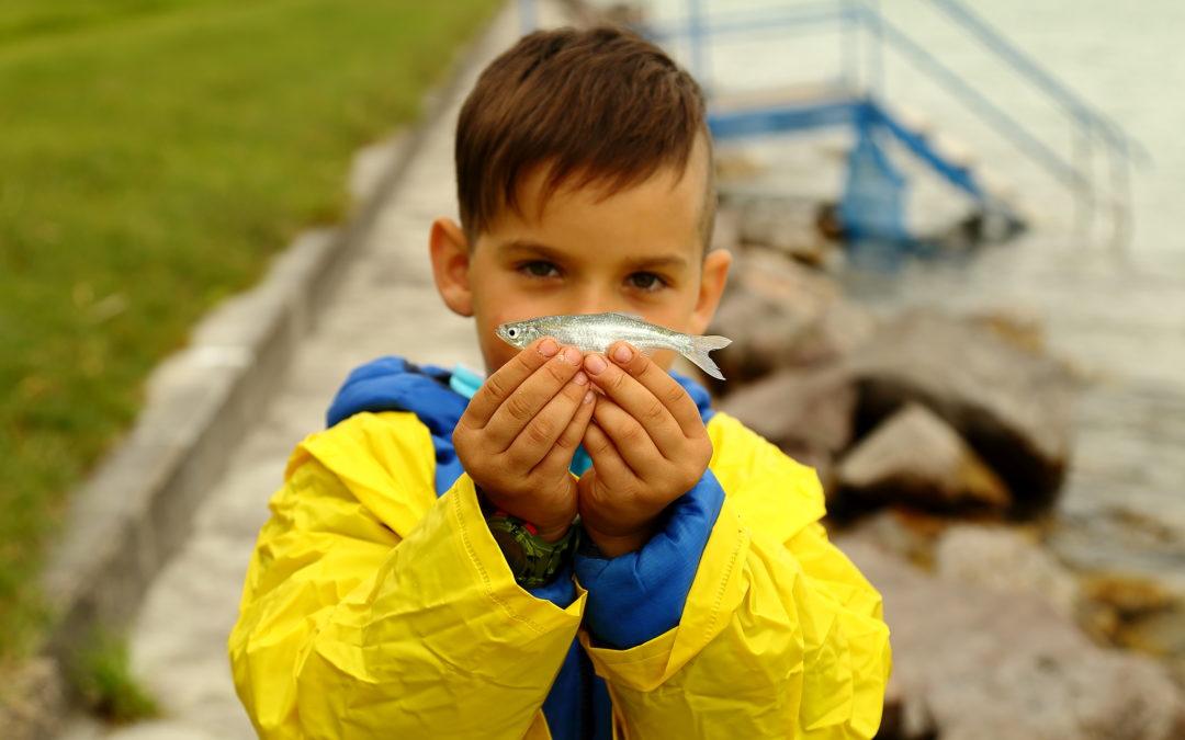 Gyermek Horgászverseny